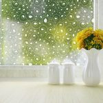 Calla Decorative Window Film for privacy by Odhams Press