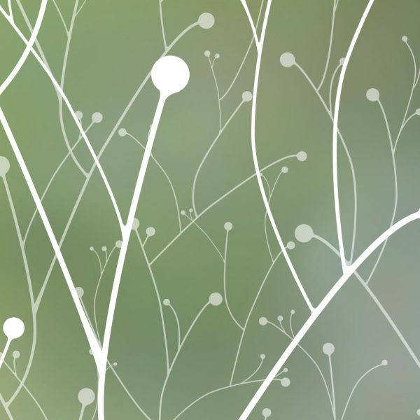 willow cling closeup privacy window film